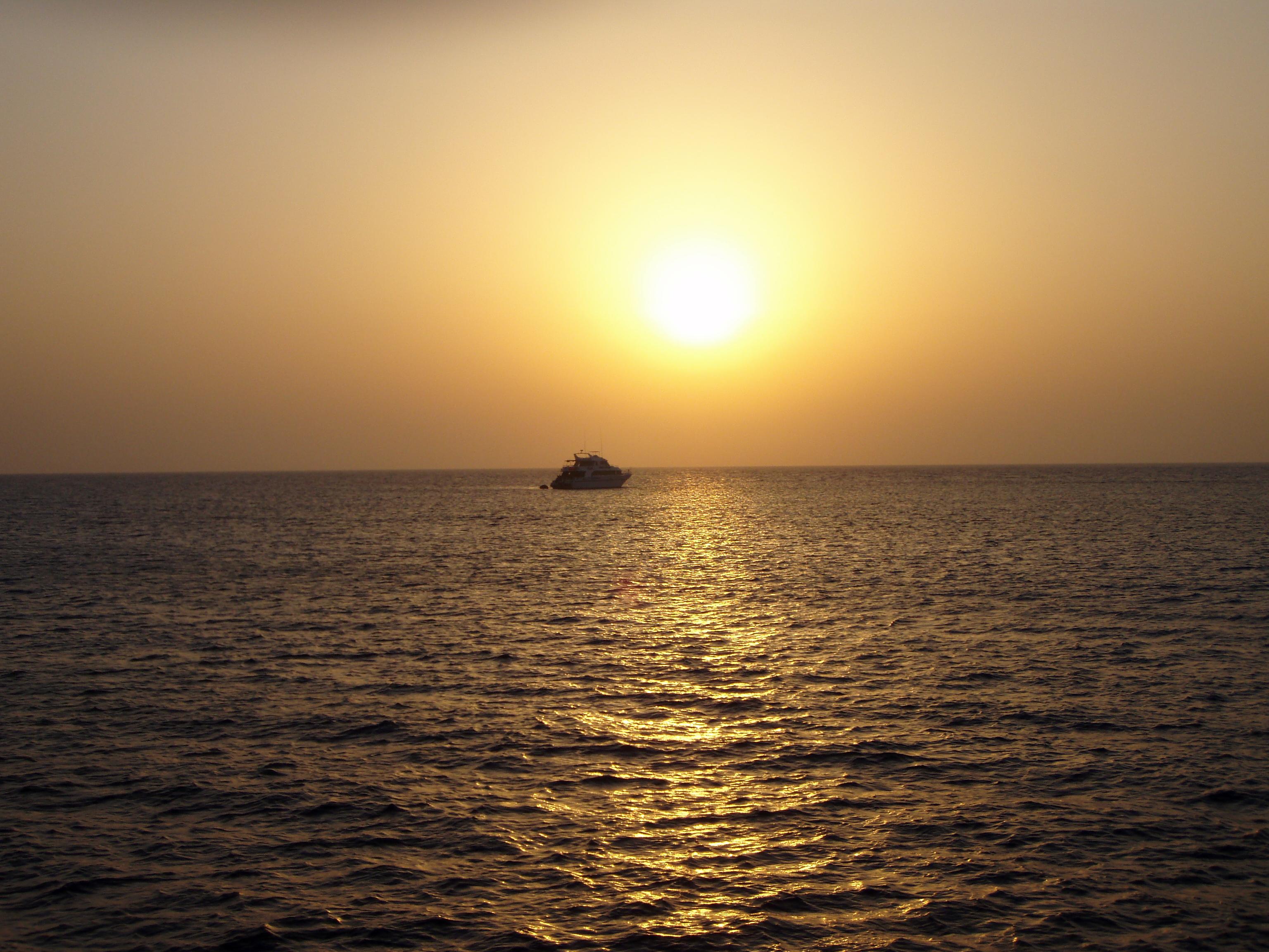 Tauchsafari Ägypten, südliches Rotes Meer